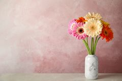 Free Bouquet Of Beautiful Bright Gerbera Flowers In Vase On Marble Table Against Color Background. Royalty Free Stock Image - 147846406