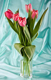 Bouquet Of Bright Tulips Stock Images