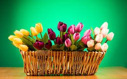 Free Bouquet Of Colorful Tulips Royalty Free Stock Photo - 15219675