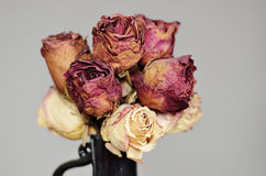Bouquet Of Dried Roses In Ceramic Vase Stock Photo