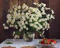 Bouquet Of Garden Daisies And Strawberries. Stock Photos