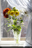 Bouquet Of Multicolored Chamomiles In Sunshine Royalty Free Stock Photos