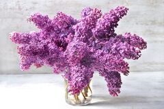 Bouquet Of Purple Lilac Flowers On A Glass Jar On White Table Royalty Free Stock Photos