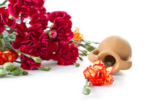 Free Bouquet Of Red Carnations Stock Photos - 24070193
