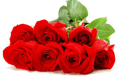 Free Bouquet Of Red Roses Stock Image - 25088431