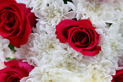 Free Bouquet Of Roses And Chrysanthemums Royalty Free Stock Photography - 27186447