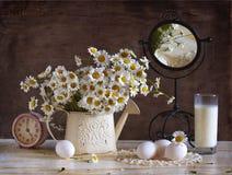 Bouquet Of White Chamomiles Stock Photo