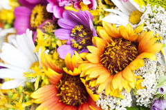 Free Bouquet Of Wild Flowers Royalty Free Stock Photography - 32599267