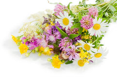 Bouquet Of Wild Flowers Isolated Over White Royalty Free Stock Images