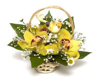 Bouquet Of Yellow Orchids Stock Photo