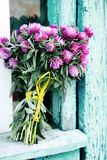 Bouquet on old window, tinted. Beautiful bouquet of wild flowers clover stock image