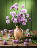 Bouquet of onion chives flowers. Stock Image