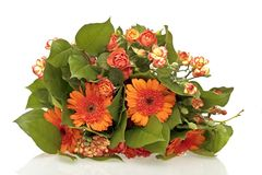 Bouquet of orange flowers Royalty Free Stock Image