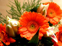 Bouquet in orange Royalty Free Stock Photo
