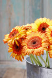 Bouquet of orange gerbera daisies in silver bucket Royalty Free Stock Photo