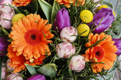 Bouquet of orange gerbera daisies, violet tulips and pink roses Royalty Free Stock Photo