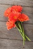 Bouquet of orange gerbera flowers Stock Photos