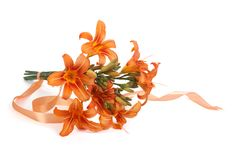 Bouquet of orange lilies tied with ribbon isolated Royalty Free Stock Photo