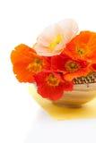 Bouquet of orange poppies on white Stock Image