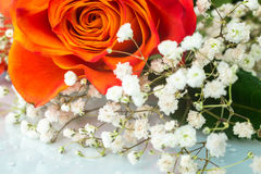 Bouquet of orange rose with white flowers Royalty Free Stock Photography