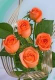 Bouquet of orange roses Stock Images