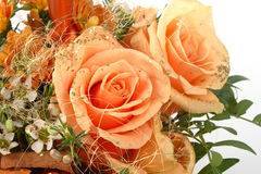 Bouquet of orange roses Stock Photo