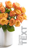 Bouquet of orange roses Stock Photography