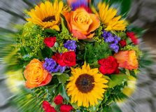 A bouquet of orange roses sunflower cloves and green leaves royalty free stock photos