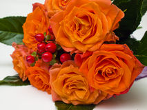 Bouquet of orange roses Royalty Free Stock Photos