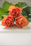 A bouquet of orange roses on wooden table. Copy space Stock Photography
