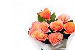 Bouquet of orange roses. Stock Photography