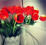 Bouquet of orange tulips stock image