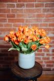 Bouquet of orange tulips near brick wall Stock Photos
