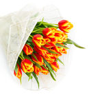 Bouquet of orange tulips. On a white background Royalty Free Stock Photo