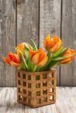 Bouquet of orange tulips stock image