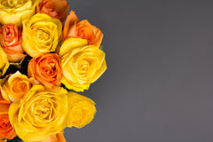 Bouquet of orange and yellow roses over grey Stock Photos