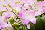 Bouquet from orchid Royalty Free Stock Photography