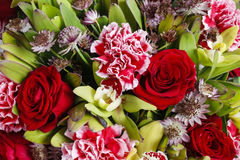 Bouquet of orchid, rose and carnation flowers Stock Image
