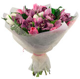 Bouquet of orchid and tulips Stock Images