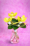 Bouquet of orchids Royalty Free Stock Photography
