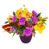 Bouquet of orchids, gladioluses and carnations in glass vase iso. Floral bouquet of orchids, gladioluses and carnations arrangement centerpiece in glass vase Stock Image