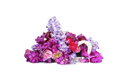 Bouquet with orchids isolated Stock Photography