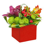 Bouquet from orchids and lilies in red vase isolated on white ba Stock Image
