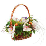 Bouquet from orchids in in wicker basket isolated on white backg Royalty Free Stock Image
