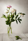 A  bouquet of  pale peonies Stock Photo