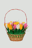 Bouquet of paper tulips Royalty Free Stock Images