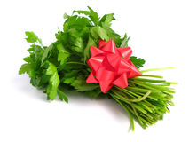 Bouquet of parsley Stock Images