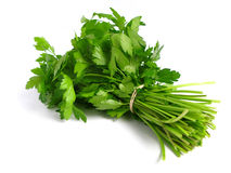 Bouquet of parsley Stock Photo