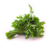 Bouquet of parsley isolated Royalty Free Stock Image