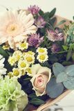Bouquet in pastel colors royalty free stock images